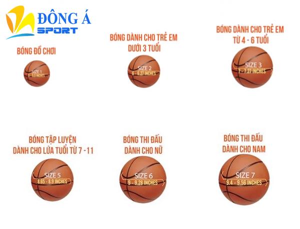 Các size bóng rổ