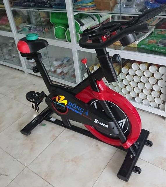 Hình ảnh xe đạp tập EMMA 9018S