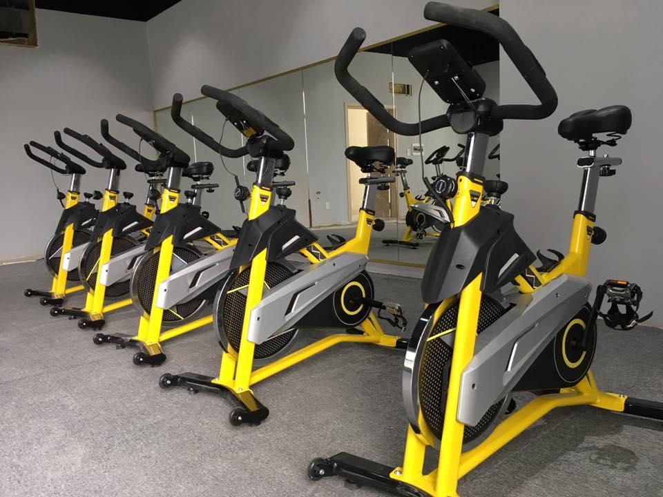 Hình ảnh xe đạp tập thể dục HQ-007