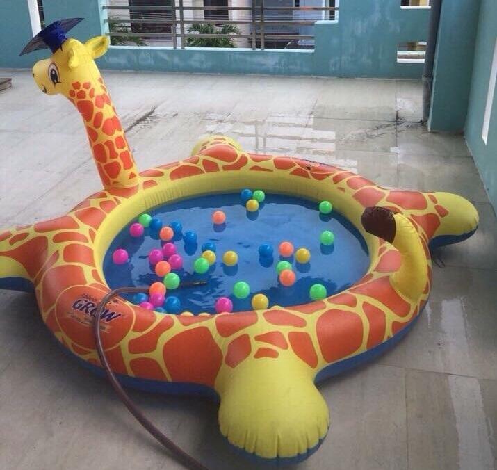 Bể phao bơi hình con vật ngộ nghĩnh