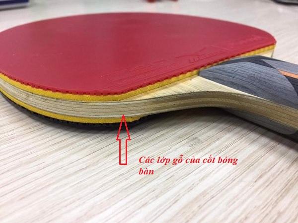 Cốt bóng bàn có cấu tạo từ nhiều lớp gỗ